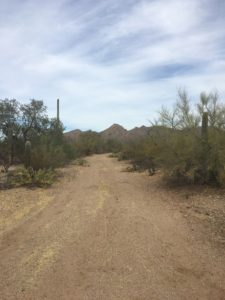 Mile Wide Road, Tucson