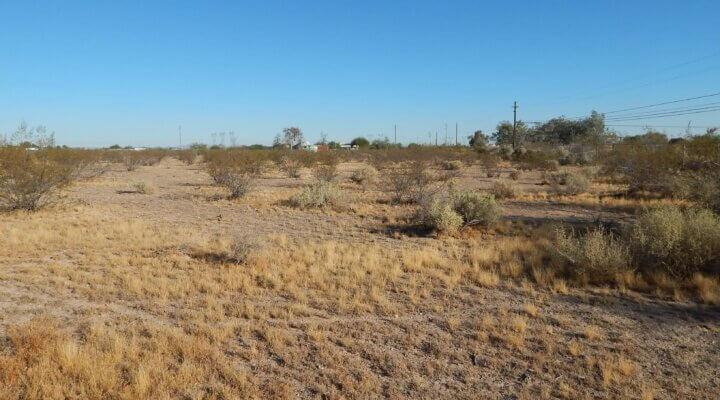 Residential Land in Tonopah Arizona